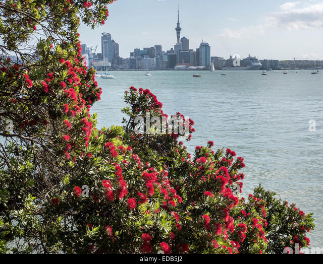 Panorama of Auckland City, New Zealand looking south across Waitemata Harbour from the North Shore - Stock Image