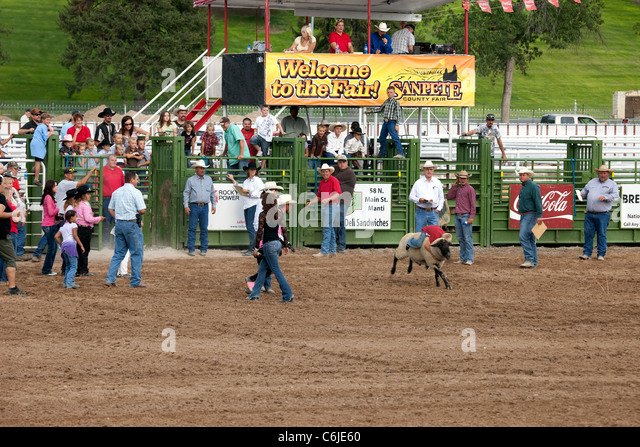 Video of a young boy riding a lamb, mutton bustin, during the county fair. Annual celebration in Mount Pleasant, - Stock Image