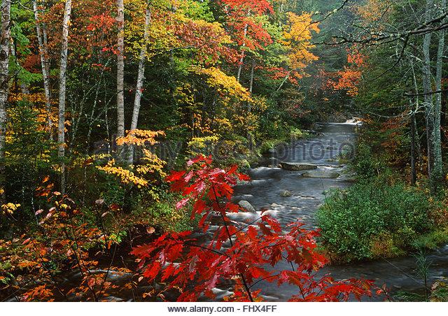 Township E, Maine, USA - Stock-Bilder