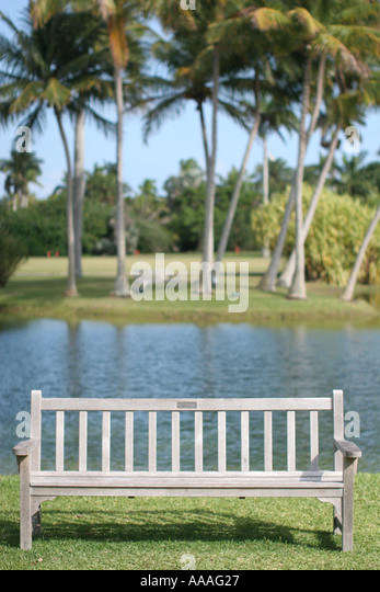 Florida, empty bench, seat, rest, relax, palm trees, - Stock Image