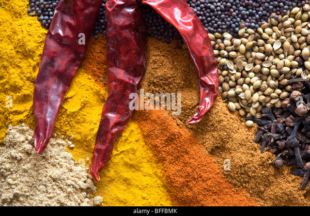 Indian cooking spices - Stock-Bilder