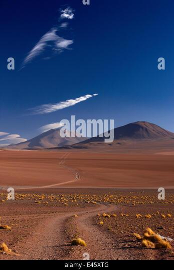 The road to Ojo de Perdiz, high on the altiplano, Bolivia, December 2009 - Stock Image
