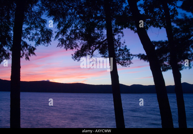 Sunset through pine trees, Lake George, The Adirondack Mountains, New York State, United States of America, North - Stock Image