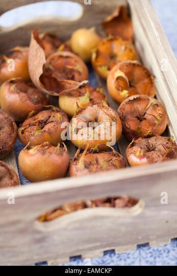 Medlars in Wooden Box - Stock Image