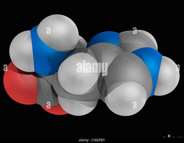Histidine molecule - Stock Image
