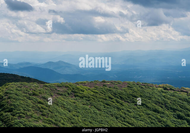 Wide View of Craggy Gardens in Spring Along the Blue Ridge Parkway - Stock Image