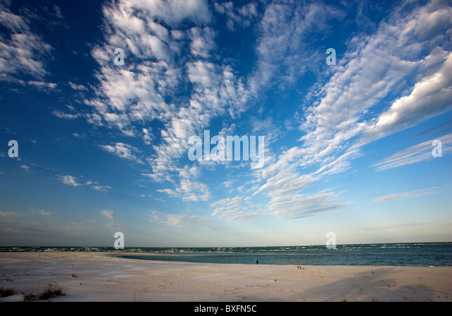 Idyllic shoreline and sandy beach at Anna Maria Island, Florida, United States of America - Stock Image