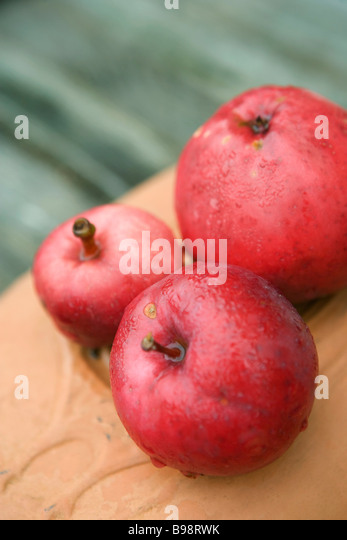 Organic red apples - Stock Image