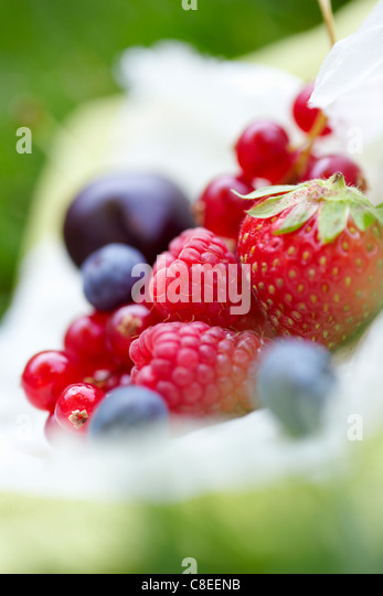 Assorted summer fruit on the grass - Stock Image