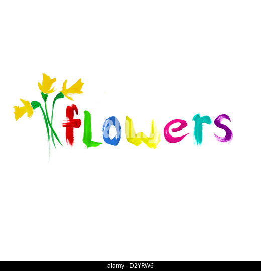 Painted Flowers on white background - Stock Image