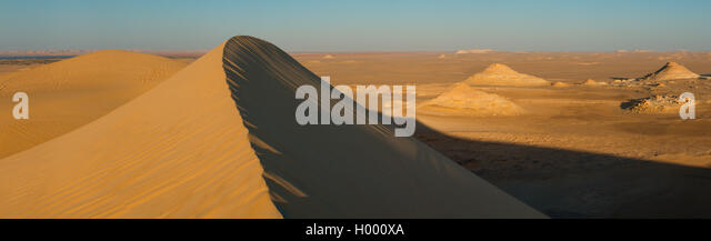 Golden sand in Sahara desert in Egypt - Stock Image
