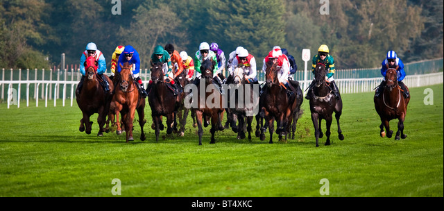 Horse Racing at Ascot, Berkshire, England. UK. GB - Stock Image