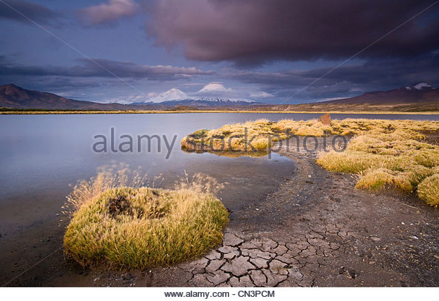Payachata Volcanoes, Lauca National Park, Northern Chile - Stock Image