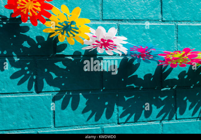 Plastic flower creating shadows on a turquoise wall - Stock Image