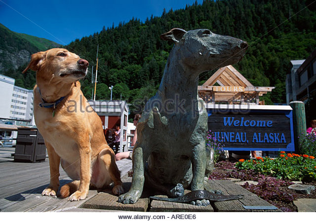Alaska Juneau Patsy Ann dog statue famous for greeting ships inliving dog visits - Stock Image