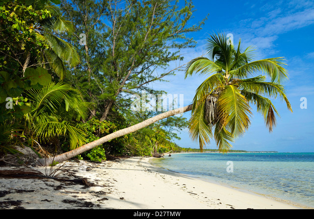 Dominican Republic : Punta Cana beach, Dominican Republic, Caribbean - Stock Image