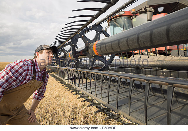 Farmer examining equipment on combine harvester - Stock Image