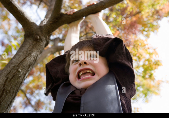 Young boy hanging from tree branch - Stock-Bilder