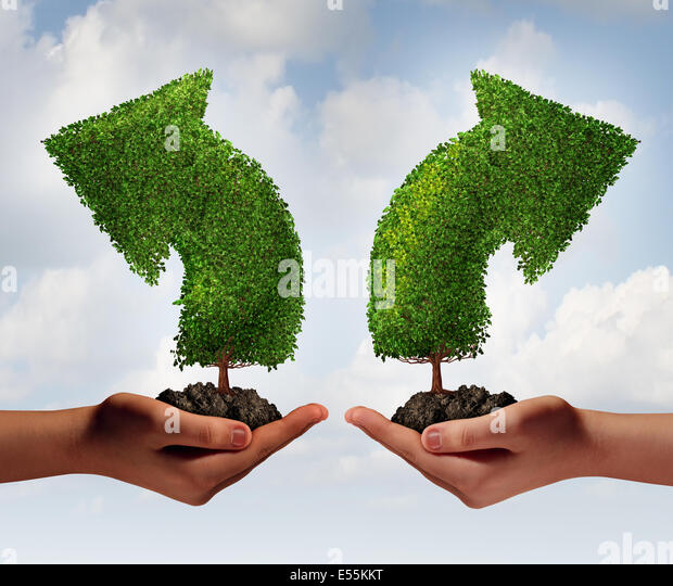 Growth choice and business guidance concept as two human hands holding up trees shaped as an arrow growing in opposite - Stock Image
