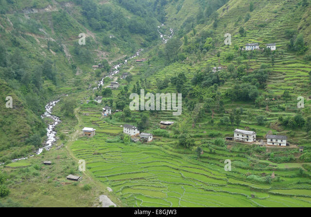 View of houses on hill and terraced fields - Stock-Bilder