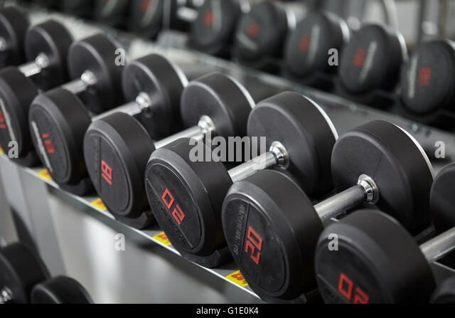 Rows of new dumbbells in the gym, on the rack - Stock-Bilder