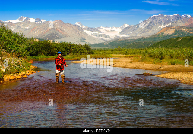 Man fly fishing in Gunn Creek off the Richardson Highway with Gulkana Glacier and the Alaska Range in the background, - Stock Image