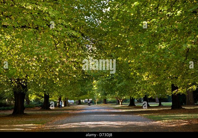 Christchurch green stock photos christchurch green stock for Landscape gardeners christchurch
