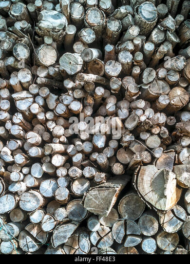 Wood pile / logs for domestic firewood, France. - Stock Image