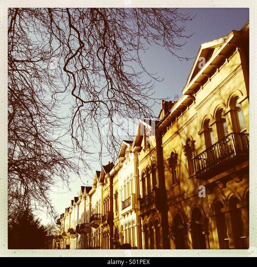 Regency houses in Cheltenham - Stock Image