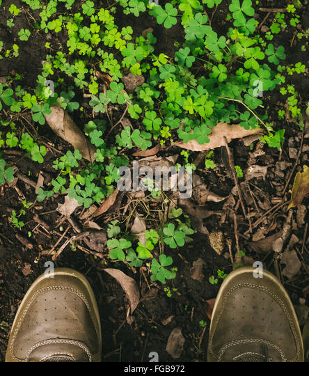 Low Section Of Man Standing In Front Of Plants - Stock Image