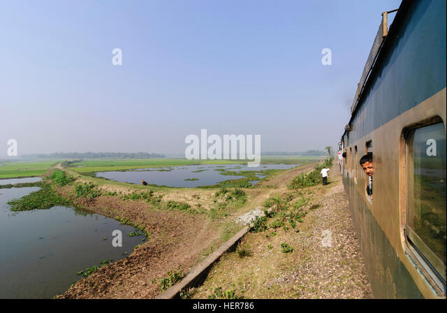 : Intercity train passes through rice fields, Chittagong Division, Bangladesh - Stock-Bilder