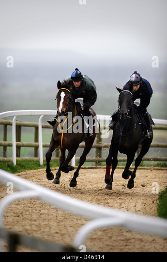 The racehorse Kauto Star (left) ridden by Head Lad, Clifford Baker on the gallops at Paul Nicholls Manor Farm Stables - Stock Image