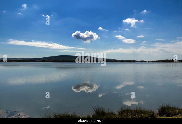 Arlington Reservoir, near Berwick, with the South Downs in the background, East Sussex - Stock Image