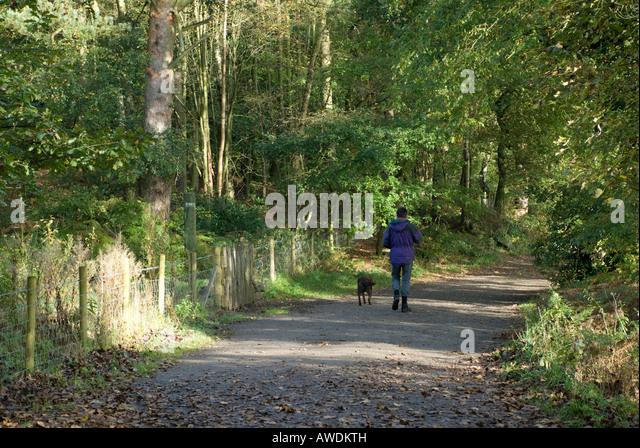 Dog Walks Cheshire Alderley Edge
