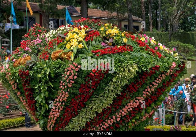 ROSE SHOW IN CENTENARY ROSE GARDEN IN OOTY TAMILNADU - Stock-Bilder