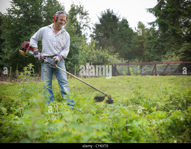 Man trimming weeds in garden - Stock Image