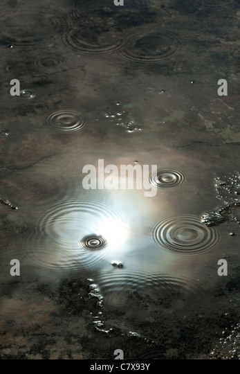 Raindrops in puddle reflecting dark moody stormy sky. India - Stock Image