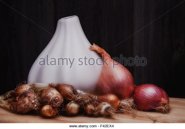 Still life image featuring freshly picked green onions, shallots, and a white, onion shaped vase. - Stock Image