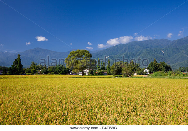 Azumino, Inada, U.S., Azumino city, Nagano Prefecture, Koshinetsu, Japan, - Stock Image