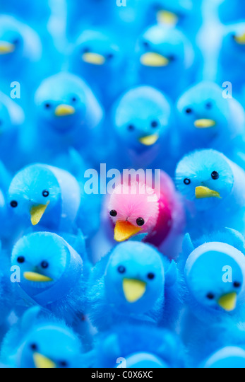 Pink Power, standing out from the crowd. - Stock Image