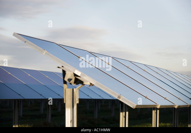 Solar cells on solar plant - Stock Image
