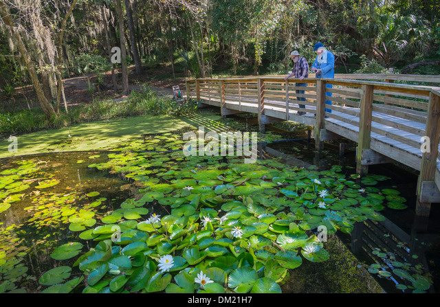 Gainesville Stock Photos Gainesville Stock Images Alamy