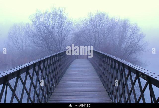 Bridge leading into foggy trees - Stock-Bilder