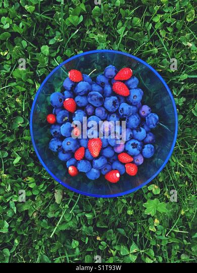 Summer berry - Stock Image