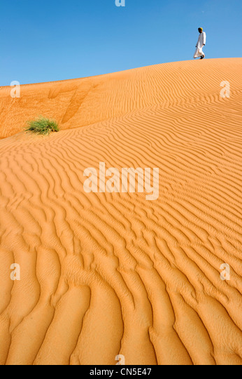 Sultanate of Oman, Ash Sharqiyah Region, desert of Wahiba Sands, sand ripple marks - Stock Image