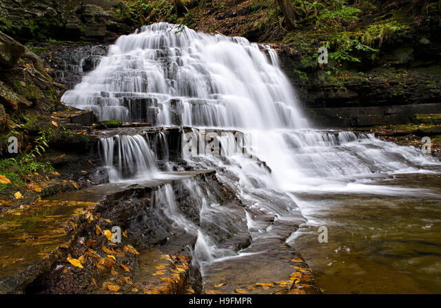 Waterfall at Salt Springs State Park in Montrose Pennsylvania, Susquehanna County North America, USA. - Stock Image