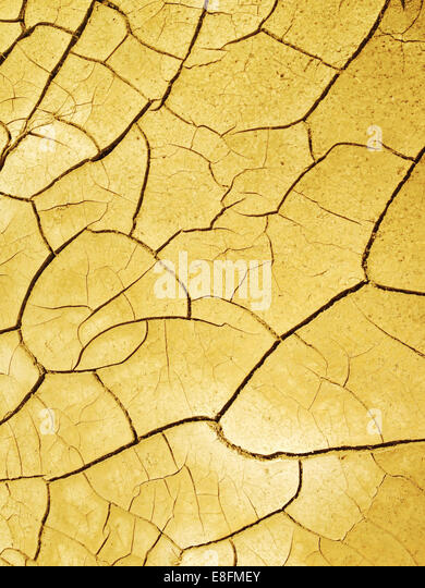 USA, Nevada, Scorched earth with cracks - Stock Image