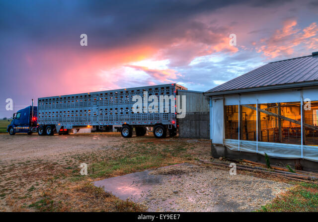 Backed up stock photos backed up stock images alamy for Cost to build a house in iowa
