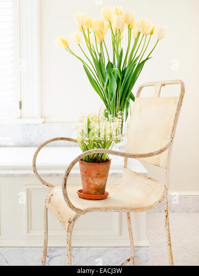bathroom chair with spring flowers - Stock Image