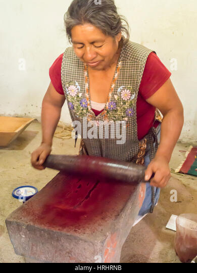 Zapotec woman grinding insects to make valuable cochineal dye, Teotitlan del Valle, Oaxaca, Mexico, North America - Stock-Bilder